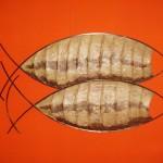 Peixes - Largura: 180 cm | Altura: 70 cm | Profundidade: 5 cm | Material: Ferro e papel de tronco de bananeira